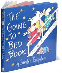 The Going To Bed Book by Your Shenanigans Will Not Be Tolerated