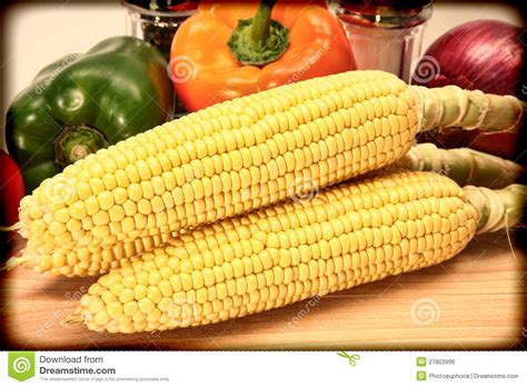 vintage style corn and vegetable photograph royalty free stock image image 27803996