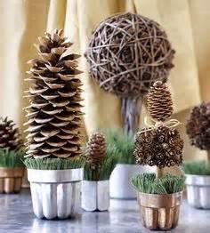 Pinecones trees pinecones forest smaller pinecones pinecone idea