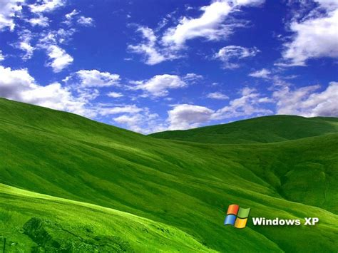 wallpaper 3d xp grass windows xp wallpapers totalinfo90