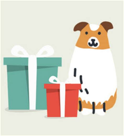 dna test petco the best gift for your this is a dna test here s why