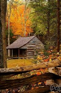 cabin in the woods beautiful places