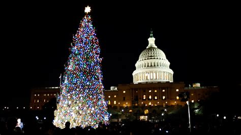 capitol hill christmas tree lit in washington video us