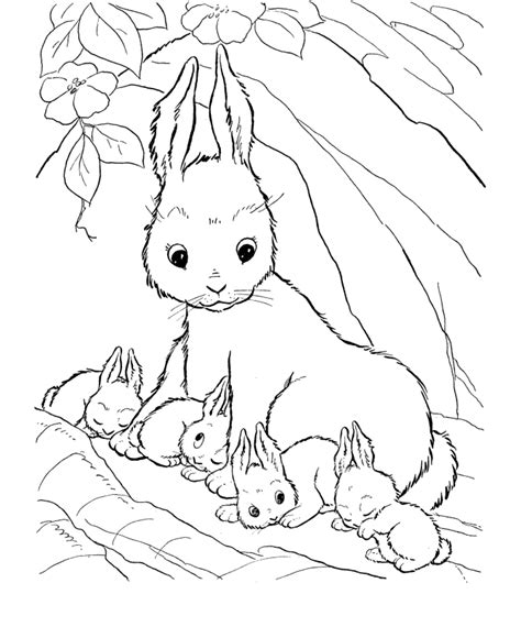 coloring pages for girls cute coloring pages