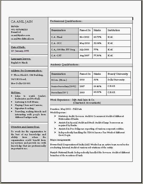 stunning resume format for accountant doc resume templates