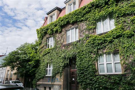 Krakow Appartments - apartments for rent krakow dä bniki â hamilton may