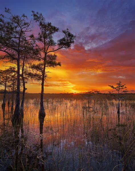 the shining gateway large print edition ebook cypress sunset everglades national park florida