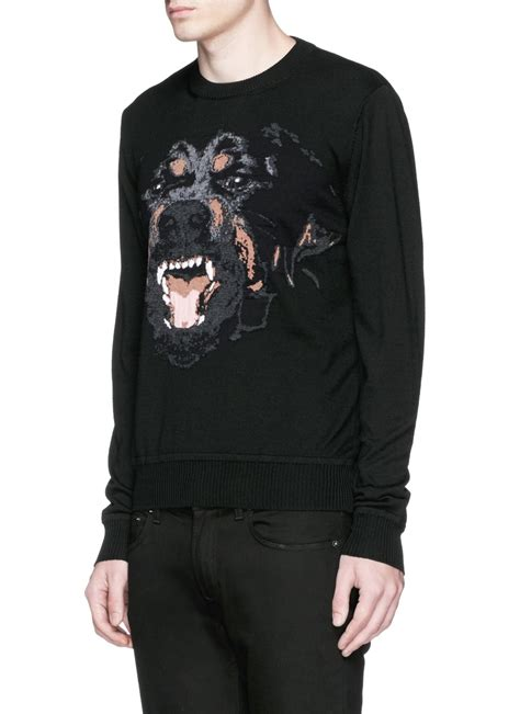 givenchy rottweiler sweater givenchy rottweiler intarsia sweater in black for lyst