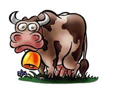 imagenes con movimiento vacas animierte tier gifs k 252 he gif paradies