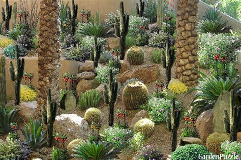 Cactus Garden Gardenpuzzle Online Garden Planning Tool Cactus Garden Designs