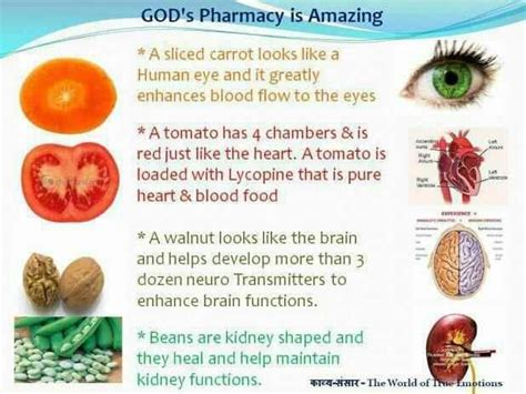 8 vegetables that act like god s pharmacy food that is so for our organs it