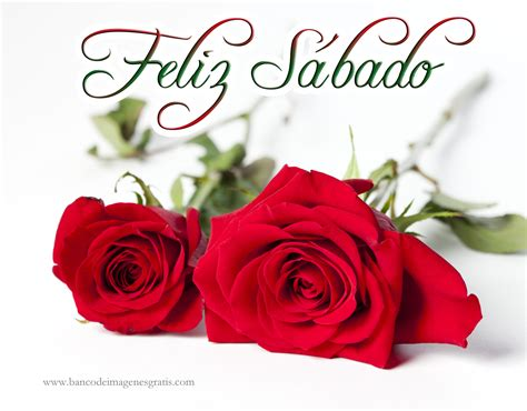imagenes de dios rosas feliz sabado happy saturday on pinterest happy saturday