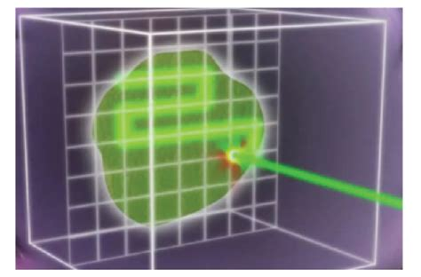 Pencil Beam Proton Therapy by Proton Beam Therapy For Localized Cancer 101