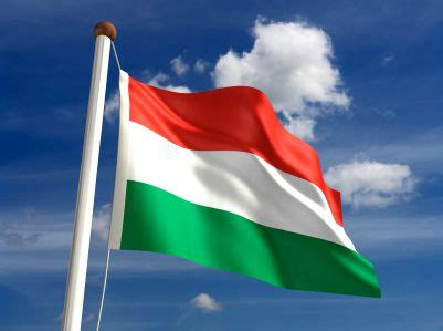 Zivana Green flag of hungary white and green tricolor