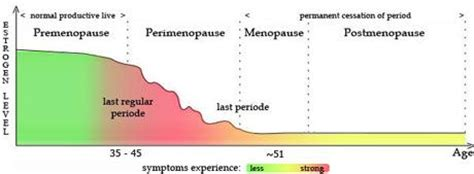 are you in perimenopause here 1000 images about menopause change from menstural to