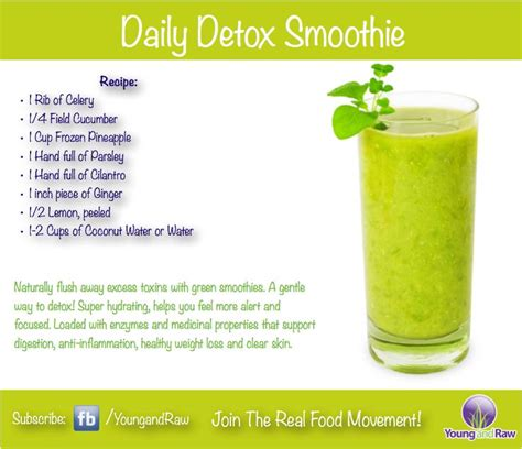 Healthy Detox Recipes Smoothies by Green Smoothie Detox Health