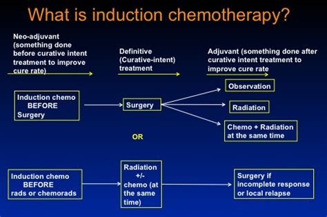 induction phase of chemo induction phase of chemotherapy 28 images post remission therapy in all symposium acute