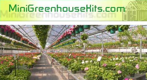 buy a green house mini greenhouse kits directory ac