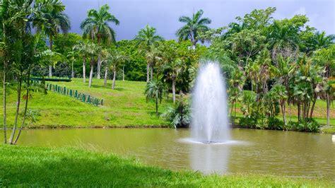 jardin botanico in san juan expedia