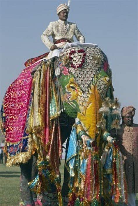 Jaipur Rugs Com Its Kingsize Elephant Festival At Jaipur