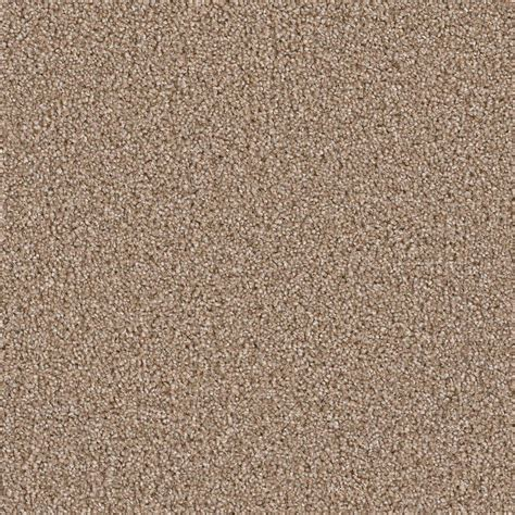 home decorators collection carpet sle palace i