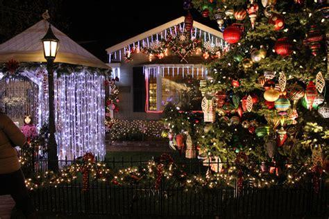 san carlos christmas lights eucalytus 1900 images of san carlos lights tree decoration ideas