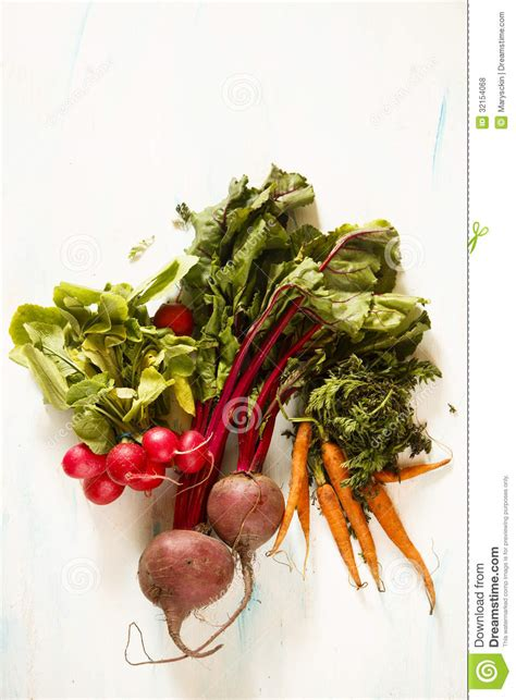 is a carrot a root vegetable root vegetables royalty free stock photos image 32154068