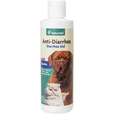 anti diarrhea for dogs buy naturvet anti diarrhea for dogs and cats 8 oz at best price
