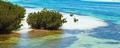 Vol pour Îles Keys