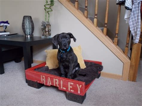 dog bed out of pallets dog or pet bed made out of pallets emu ridge