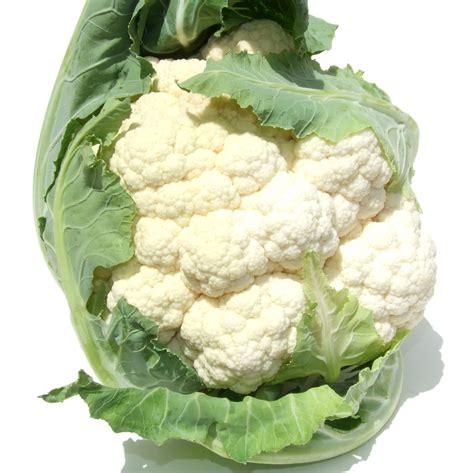 Cauliflower Fresh buy fresh cauliflower fresh cauliflower brisbane