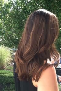 honey brown haie highlights hair light brown hair honey highlights beauty pinterest