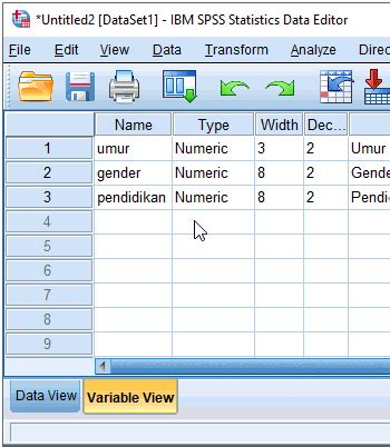 spss tutorial input data variable view pada spss dan cara membuat variabel advernesia