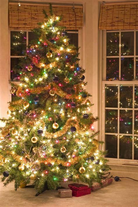 imagenes con arbol de navidad zoom frases imagenes navidad con arboles wallpapers fondos