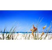 Beautiful Beach Big Blue Sky 1920x1080 HD Wallpaper Sunny Beaches
