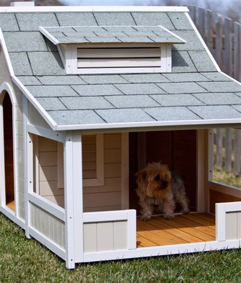 Top 10 Most Expensive Dog Houses Howmuchisit Org