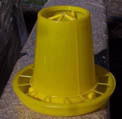 Yellow Ubi 1 Kg 1kg yellow feeder comps poultry