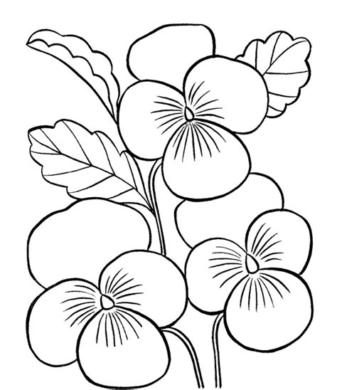 printable flower pictures to color beautiful flowers printable coloring pages of flowers coloring home