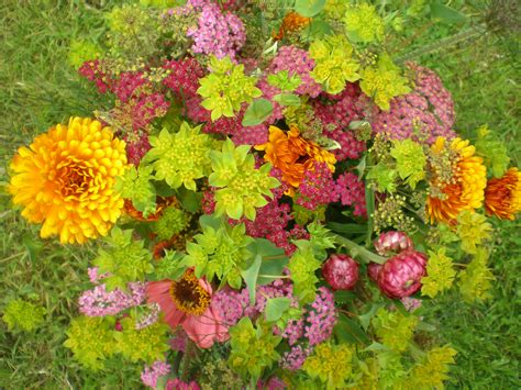 Garden Flowers Smalltowndjs Com Images Of Flowers Garden