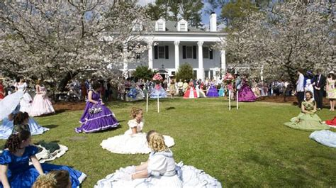 southern comfort of charlotte 89 best images about things to do in nc on pinterest