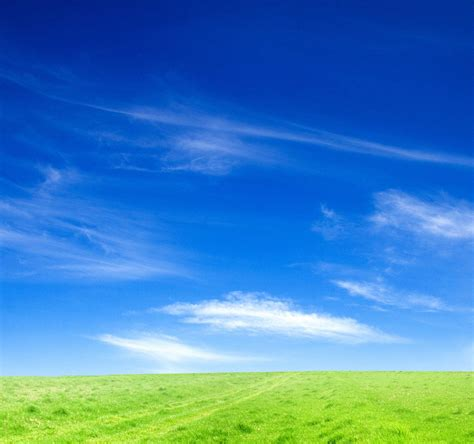 whatsapp wallpaper grass blue sky and green grass 4k ultra hd wallpaper hd wallpapers