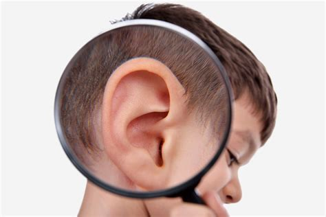 ear infection treatment ear infection in children causes treatment and home remedies