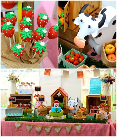 farm themed birthday decorations kara s ideas farm barnyard themed birthday