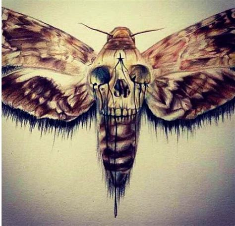 the gallery for gt black and grey moth tattoo