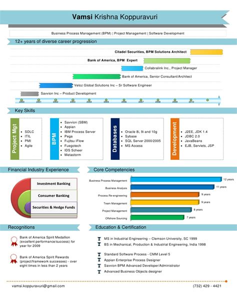 Ceo Resume Sample Doc by Visual Resume Created By Picto Cv