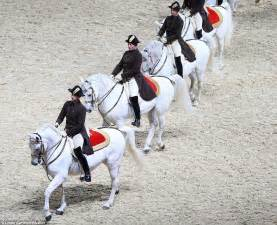 Sho Kuda Vienna horses spain best 2017