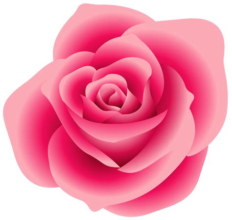 large pink rose clipart gallery yopriceville high