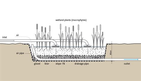 design criteria for wetlands replacement vertical flow cw sswm