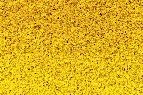 teppich gelb yellow carpet texture stock photo colourbox