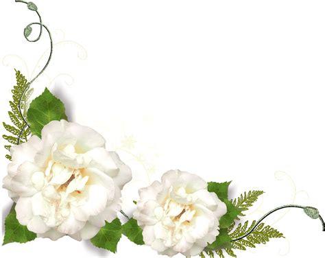 imagenes de flores para difuntos gifs y fondos pazenlatormenta marcos esquineros para fotos